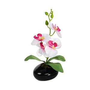 glas deko orchidee online kaufen die moderne hausfrau. Black Bedroom Furniture Sets. Home Design Ideas