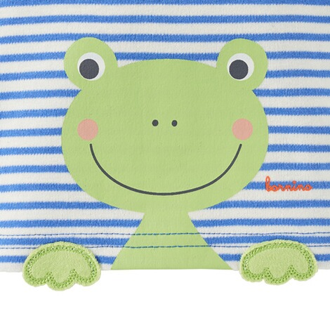 Bornino HAPPY DAYS T-Shirt Ringel Frosch 3