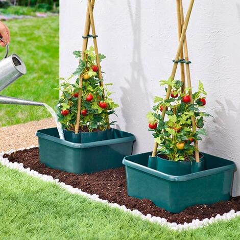 tomaten anzuchthilfe online kaufen die moderne hausfrau. Black Bedroom Furniture Sets. Home Design Ideas