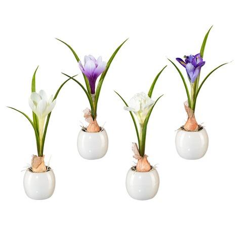 krokus und iris mit zwiebel im keramiktopf wei und lila ca 20 cm 4er set online kaufen. Black Bedroom Furniture Sets. Home Design Ideas