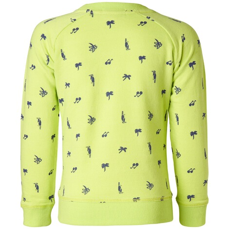 NOPPIES  Sweater Ferndale  Lime 2