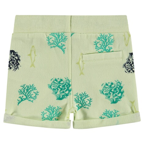 NOPPIES  Shorts Micco  Light Pistache 2