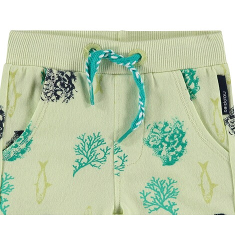 NOPPIES  Shorts Micco  Light Pistache 3